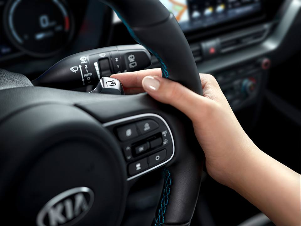 Kia Niro De Ev My20 Smart Regenerative Braking
